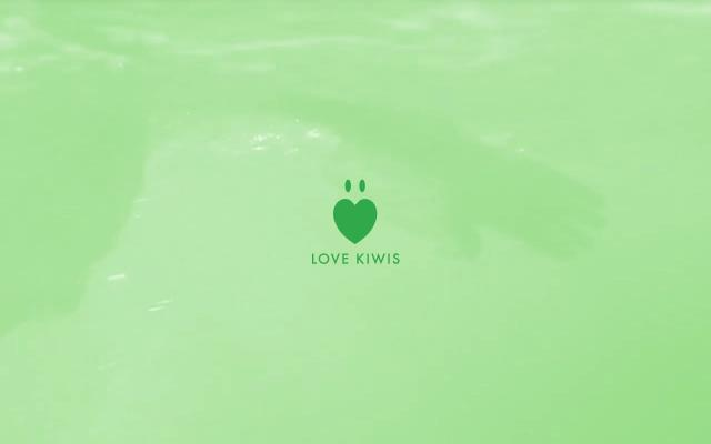 Screenshot of Lovekiwis