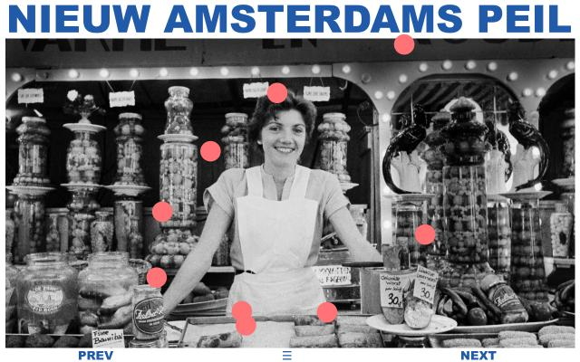 Screenshot of Nap-amsterdam
