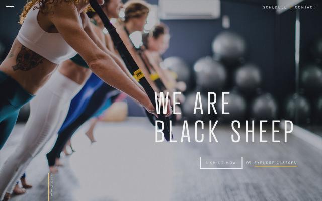 Screenshot of Blacksheepstudiosnj