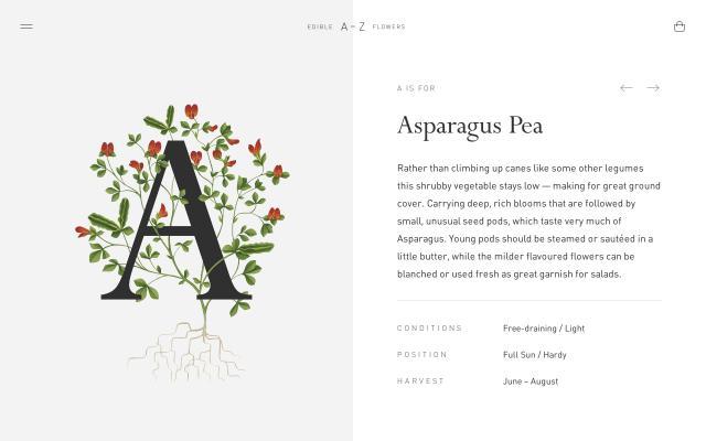 Screenshot of Flowerstoeat