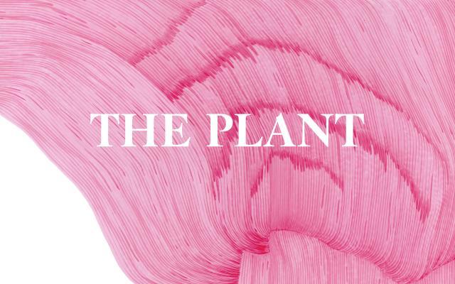 Screenshot of Theplantmagazine