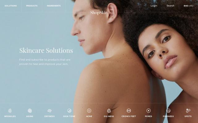 Screenshot of Shopskin