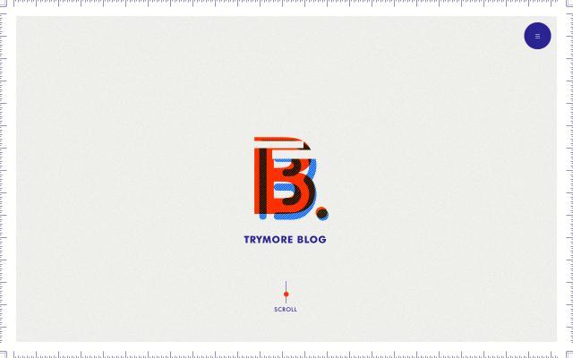 Screenshot of Trymore-inc