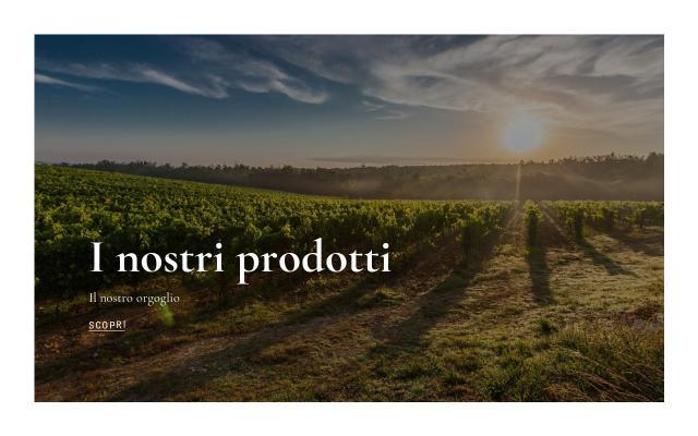 Screenshot of Agostinetto-wine